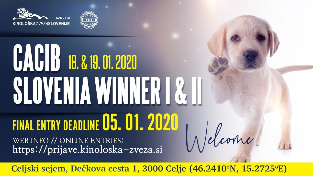 National Dog Show 2020.Cacib Slovenia Winner 2020