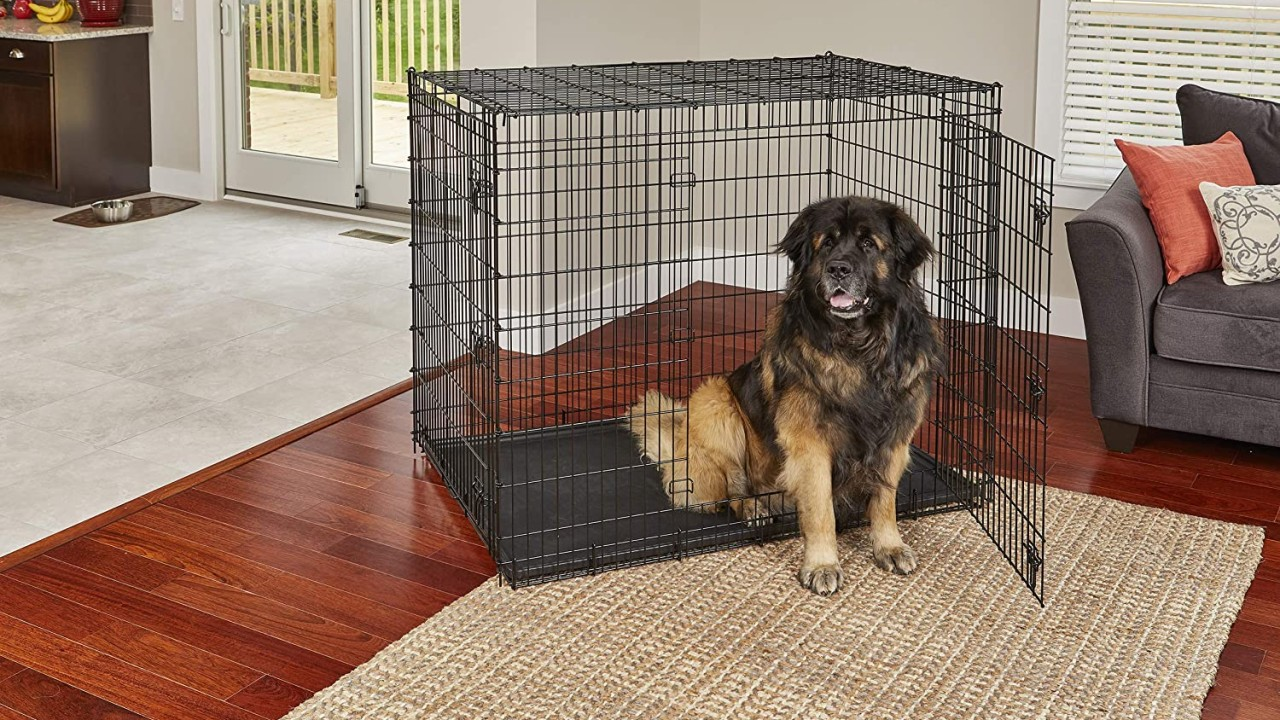 5 Best Dog Crates reviewed by 500 Dog Breeders