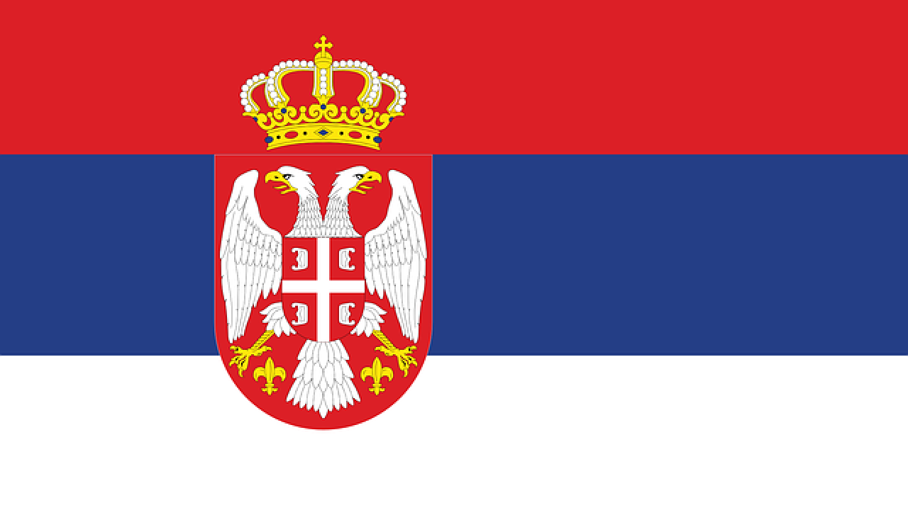 Serbia dog shows