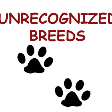 Unrecognized breeds