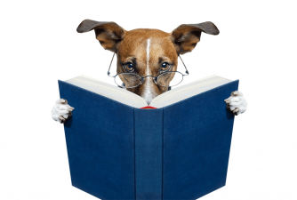 Best Dog Training Books for New Dog Owners
