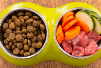 Things to Consider Before Switching to Homemade Dog Food