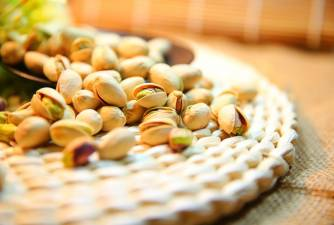 Can Dogs Eat Pistachios - Here is What Vets Might Tell You