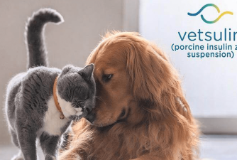 Vetsulin for Dogs - Where to Get it?