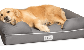 Waterproof Dog Bed - Why is it a Good Idea?