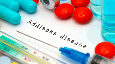 Addison's Disease in Dogs