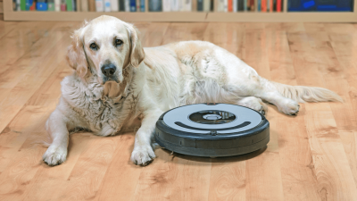 What Is The Best Vacuum For Pet Hair?