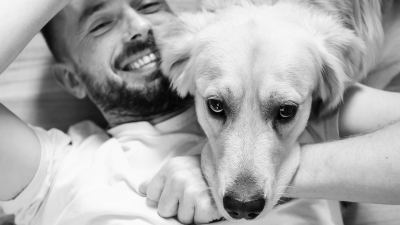 How Psychiatric Service Dogs Help People
