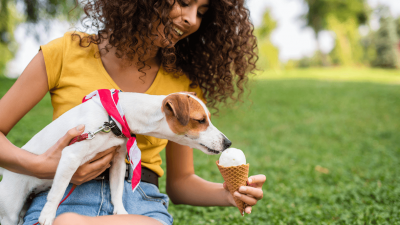 Is Ice Cream Bad for Your Dog?