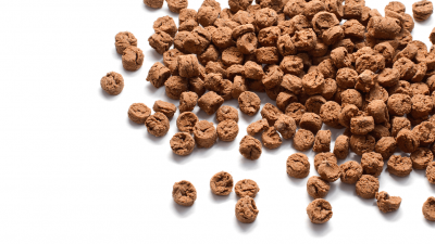 The Best Freeze Dried Dog Food (2021 Review)