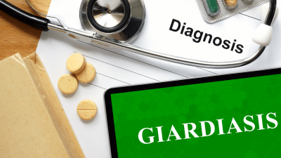 Giardia In Dogs