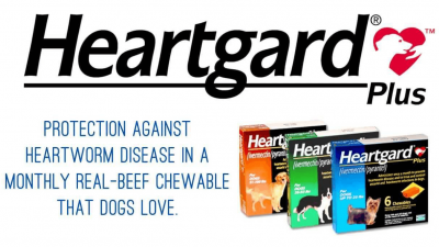 Is Heartgard for Dogs Safe