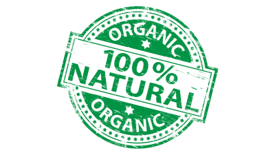 The Best Organic Dog Food in 2021