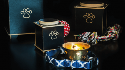 Best Pet Urns for Commemorating Your Dog