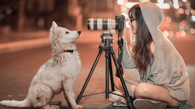 Best Dog Cameras in 2021