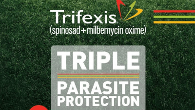 Should You Pick Trifexis Chewables