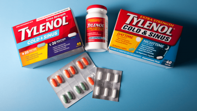 Can Dogs Take Tylenol for Pain