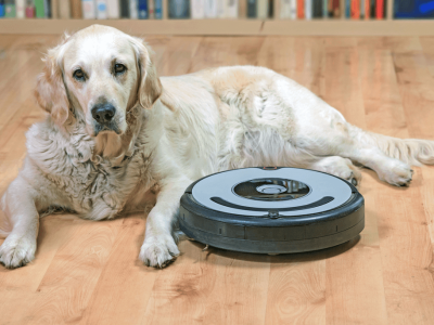 What Is Best Vacuum For Pet Hair?