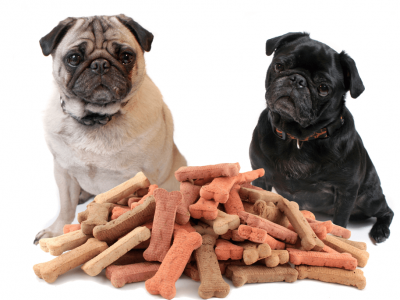 Best Dog Treats and How to Choose Them