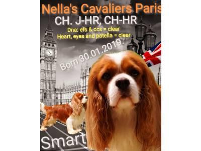 Nella S Cavaliers Paris