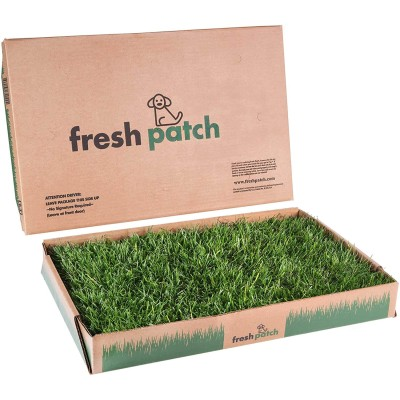 Fresh Patch Dog Pad with Real Grass