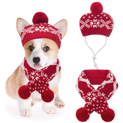 Mihachi Dog Hat and Scarf Set