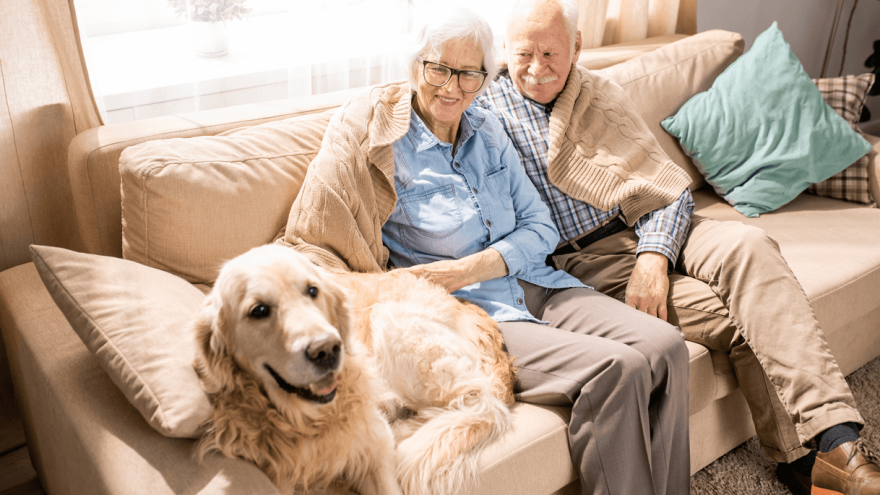 The 7 Dog Breeds Perfect for Elderly Dog Owners