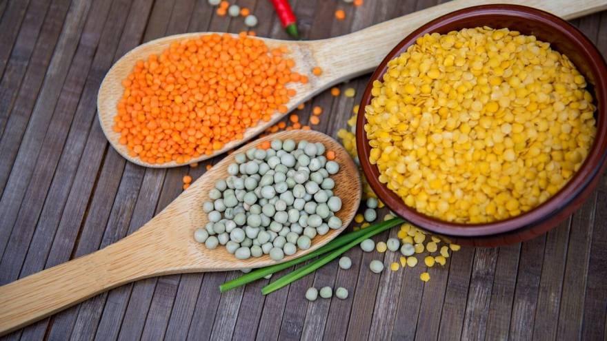 Should You Give Lentils to Your Dog