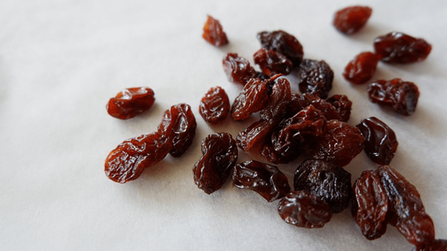 Raisins and Dogs - Are They Really That Dangerous?