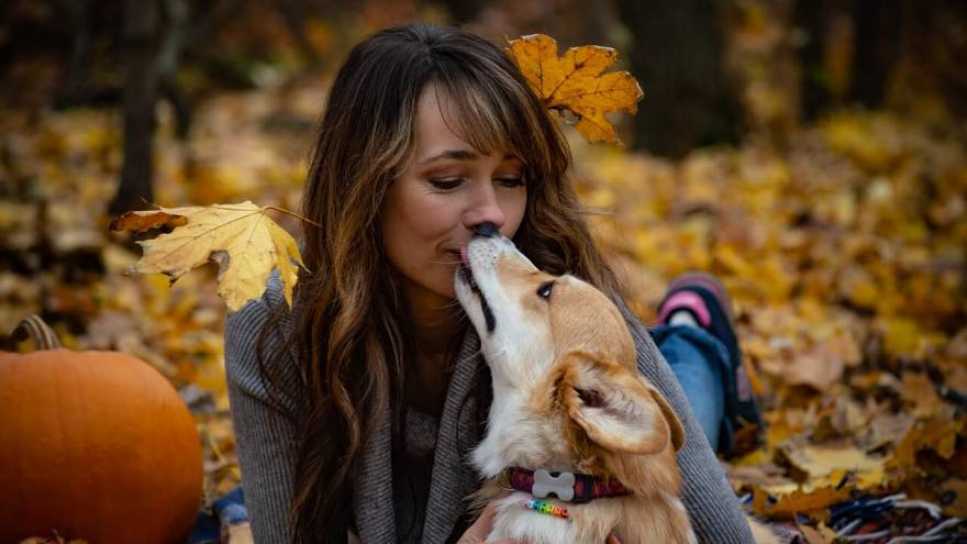 Expert Opinion - Do Dogs Like Kisses?