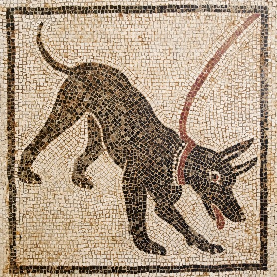 dogs in ancient rome