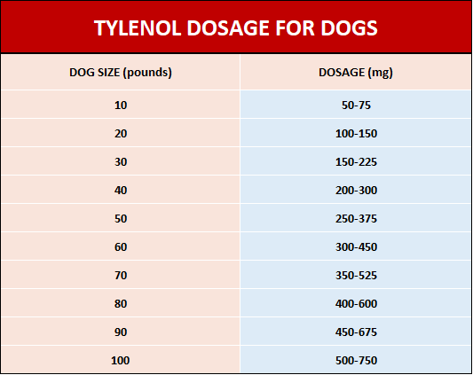 Tylenol dosage for dogs